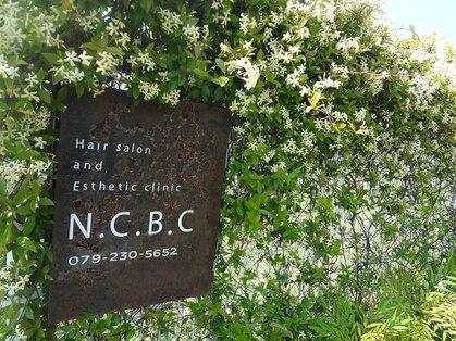 エヌシービーシー(N.C.B.C)の写真