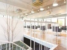 ロコピカロ プレスト(LOCOPICARO PRESTO)の雰囲気(解放感のある店内ー…。一人一人リラックスできる空間。)