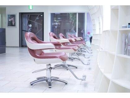エゴヘアコレクション(EGO HAIR COLLECTION))の写真