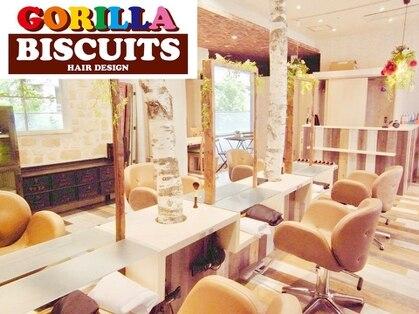 ゴリラビスケッツ(GORILLA BISCUITS)の写真