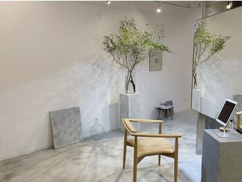 カフー(cafu)の写真/おしゃれでリラックスできる雰囲気の店内×少人数サロンならではの穏やかな空気感。特別な時間を...[cafu]
