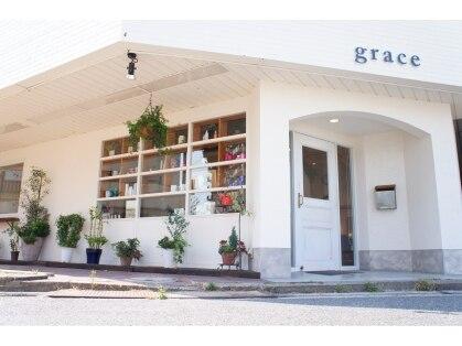 グレイス(grace)の写真