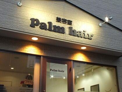 パームヘアー(Palm hair)の写真