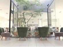 セリオミアイ(serio miai)の雰囲気(店内中央部に、存在感のある大きな木が上質空間を演出。)