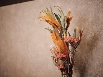 リュドール 池下(Rue D'or)の写真/池下駅NEWOPEN☆全席個室サロン♪高品質オーガニックカラーでダメージレスに理想のカラーを叶えます♪