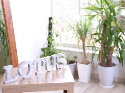ヘアーメイクロータス(HairMake Lotus)の写真