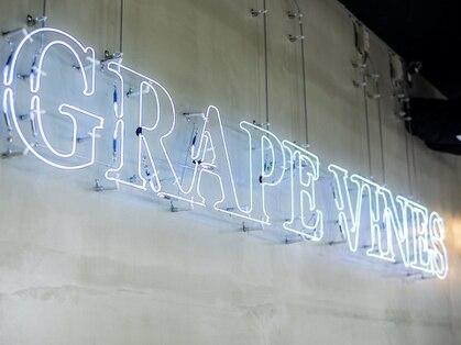グレープバイン(GRAPEVINES)の写真