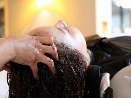 オアシスヘアモード(Oasis hairmode)の写真