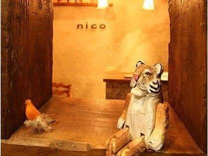 ニコ 光明池(nico)の写真