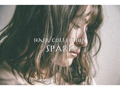 ヘアーコレクション スパーク(Hair Collection Spark)の写真