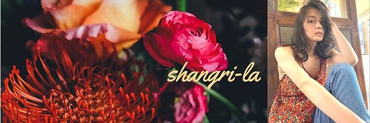 シャングリラ(shangri-la)のサロンヘッダー