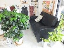ヘアメイク ホーム 双(Hair Make Home SO)の雰囲気(落ち着いたシックな客待ち。植物も多く、癒され空間です。)