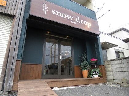 スノードロップ(snow drop)の写真