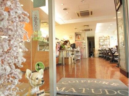 マツド美容室本店の写真