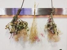 アンフルマチ(Ann furumachi)の雰囲気(インテリアのポイントはお洒落ドライフラワーや植物♪)