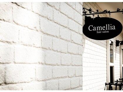 カメリア (camellia)の写真