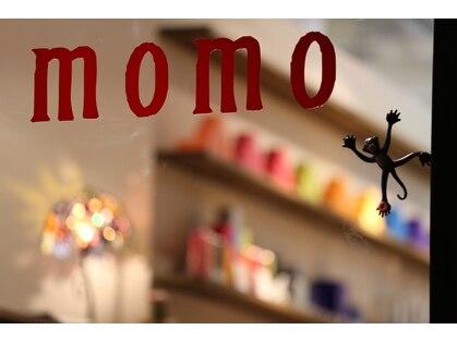 モモ(momo)の写真