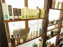 センシュアスヘアデザイン(Sensuous Hair Design)の雰囲気(植物がずらっと並ぶ店内♪グリーンに囲まれてホッと落ち着く空間)