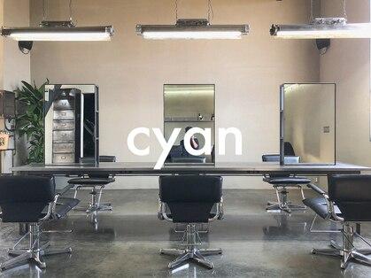 シアン(cyan)の写真