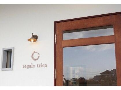 レガロトリカ(Vis regalo trica)の写真