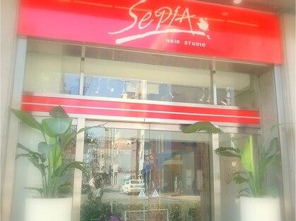 セピア(SepiA)の写真