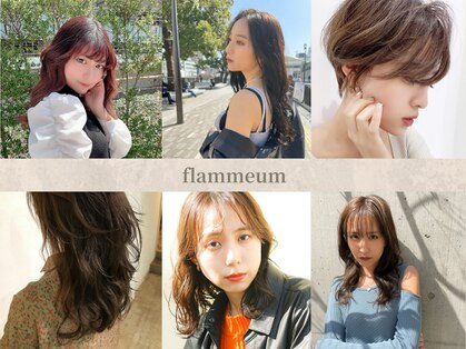 フラミューム 藤沢(flammeum)の写真