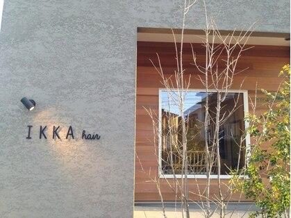 イッカ(IKKA)の写真