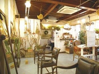 """ブラウンバニーオーケストラ(Brown Bunny Orchestra)の写真/《ブエナビスタ近く》私だけの隠れ家サロン―。cafeのような癒し空間で""""あなただけ""""に寄り添ってくれる。"""