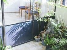 気持ちいい光が入る店内☆エントランスにたくさんの植物たち☆