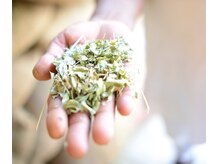 ヘアジーン(hair gene)の雰囲気(インド ソジャット産の良質なヘナを使用しております)