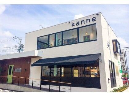 カンネ(kanne)の写真