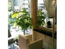 ネオフィリア 四谷店(NEO PHILIA)の雰囲気(髪の悩みなど、丁寧にカウンセリング。似合うスタイルを提案!)