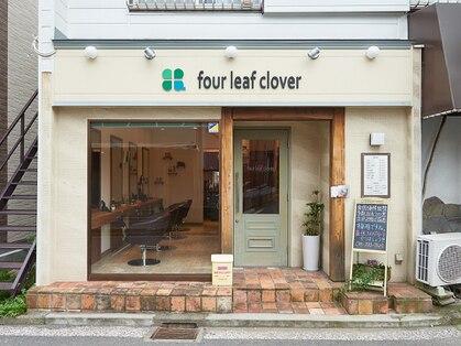 フォーリーフクローバー(four leaf clover)の写真