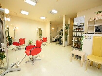 スタジオ シン 美容室(STUDIO shin)の写真