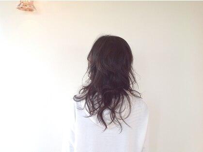 ブブグラスヘアーの写真