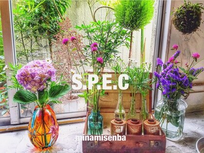スペック(SPEC)の写真