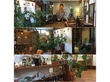 ラブハーツオハナ(Love Hearts OHANA)の雰囲気(店内風景。テーマは『地球』と『自然』。)