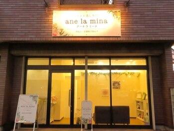 アーネラミーナ(Anela mina)(静岡県浜松市東区)