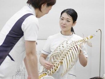 静岡療術整体院/整体学校での指導【金刺先生】