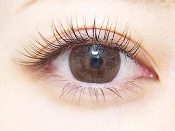 まつ毛エクステサロン ヴィーナスアイラッシュ(Venus Eyelash)