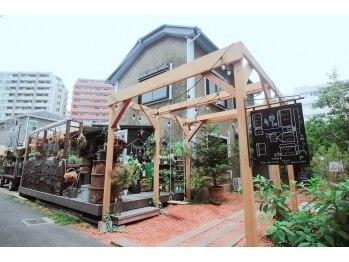 ハウスアンドアイラッシュ ネイル(House&eyelash nail)(神奈川県藤沢市)