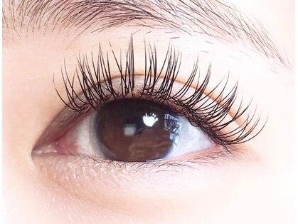 eye lash salon noi