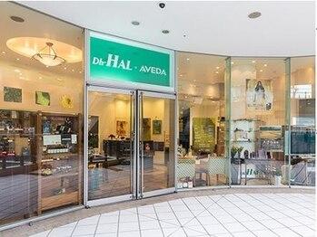 ディーエイチ ハル 横浜ベイクォーター店(Dh-HAL)(神奈川県横浜市神奈川区)