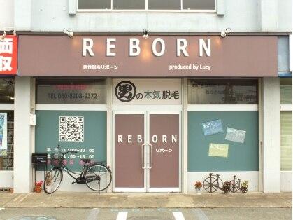 リボーン(REBORN)の写真