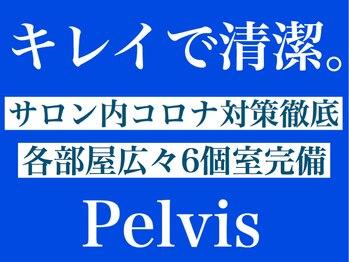 ペルビス美容整体(Pelvis美容整体)(長崎県長崎市)