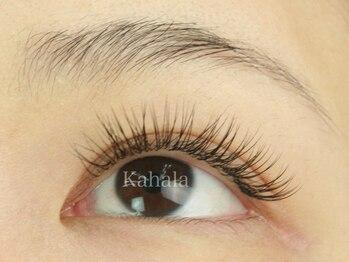 アイラッシュリゾートカハラ 青葉台店(Kahala)の写真/エクステが初めてのお客様でも分かりやすいカウンセリングと的確な提案力で、今よりもっと素敵な瞳に☆