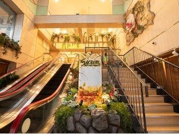 スパリゾートJNファミリー(神奈川県相模原市)