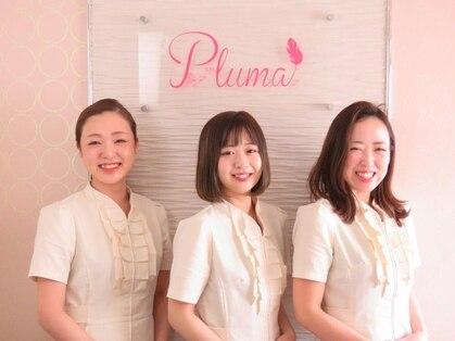 プルマ(Pluma)の写真