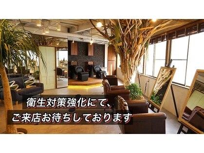 3Piece【まつげ】