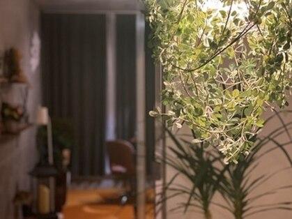 レムリアネイル(LemuriaNail)の写真